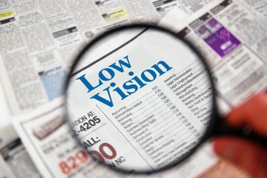 Low Vision Hamilton