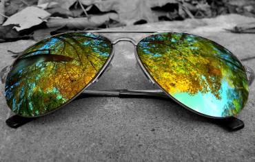 Sunglasses Hamilton