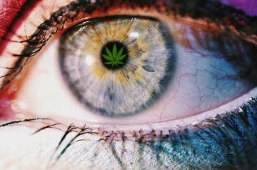 Marijuana Use and Vision