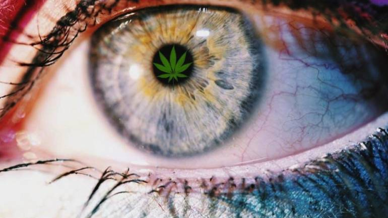 Marijuana Use and Vision